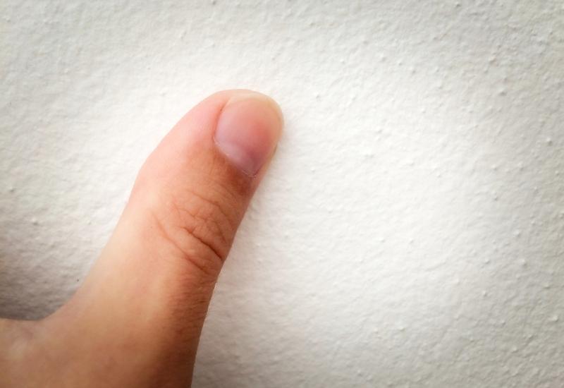アガスティアの葉 オンライン 鑑定 拇印